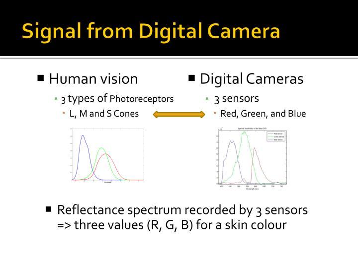 Signal from Digital Camera