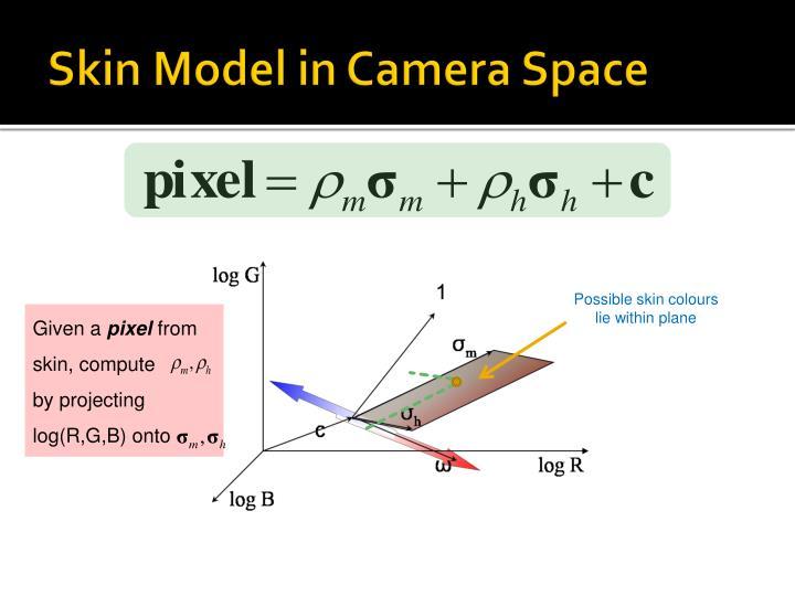 Skin Model in Camera Space