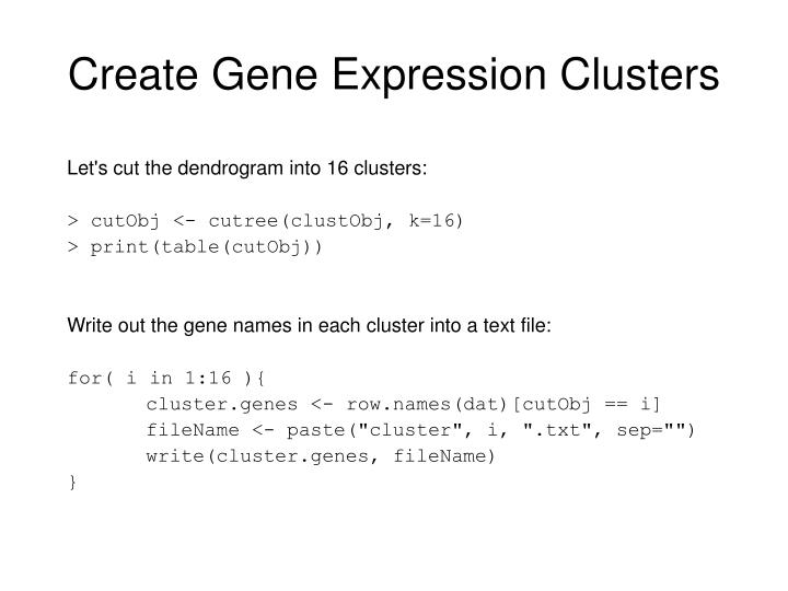 Create Gene Expression Clusters