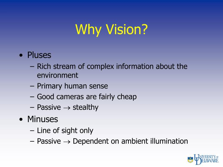 Why Vision?