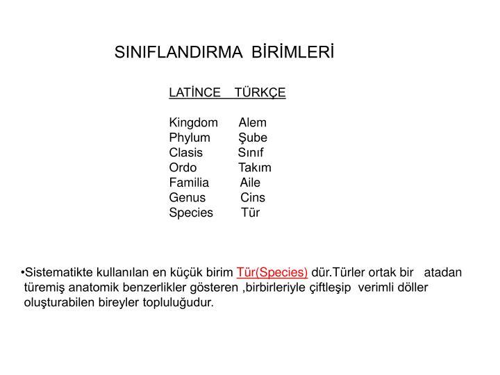 SINIFLANDIRMA  BİRİMLERİ