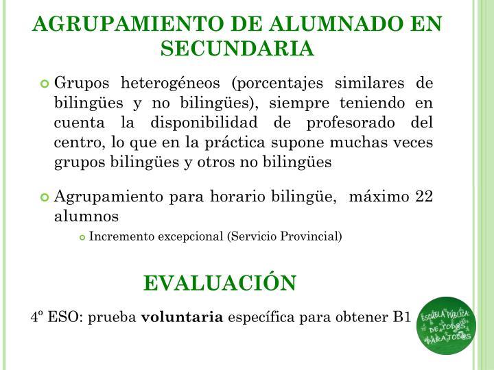 AGRUPAMIENTO DE ALUMNADO EN SECUNDARIA