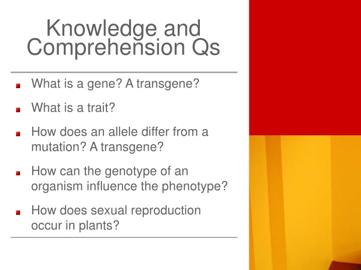 Knowledge and Comprehension Qs