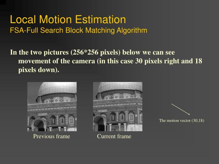 Local Motion Estimation