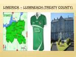 limerick luimneach treaty county