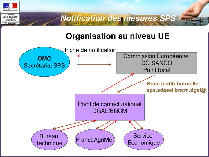 Notification des mesures SPS