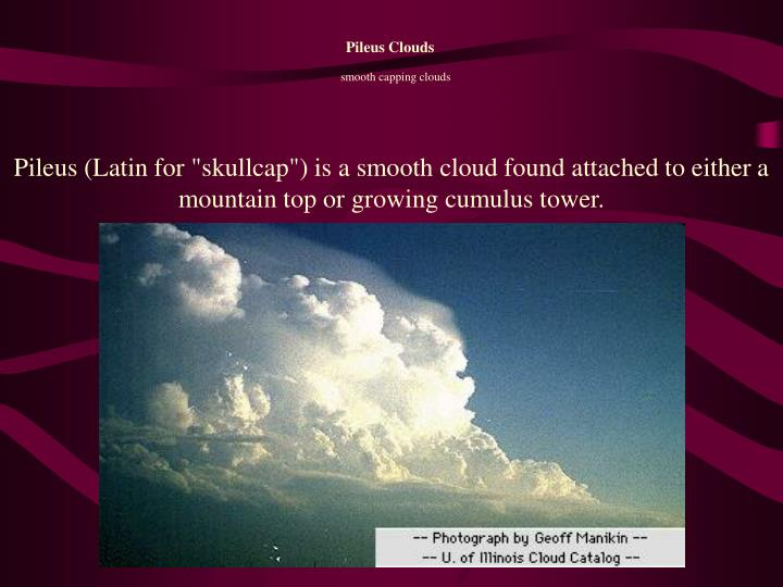 "Pileus (Latin for ""skullcap"") is a smooth cloud found attached to either a mountain top or growing cumulus tower."