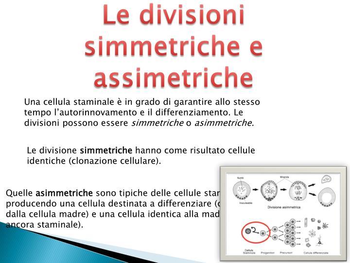 Le divisioni simmetriche e