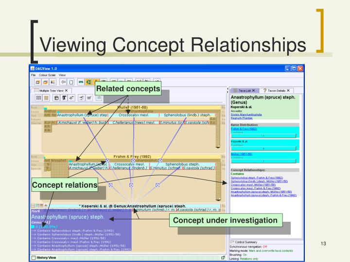 Viewing Concept Relationships