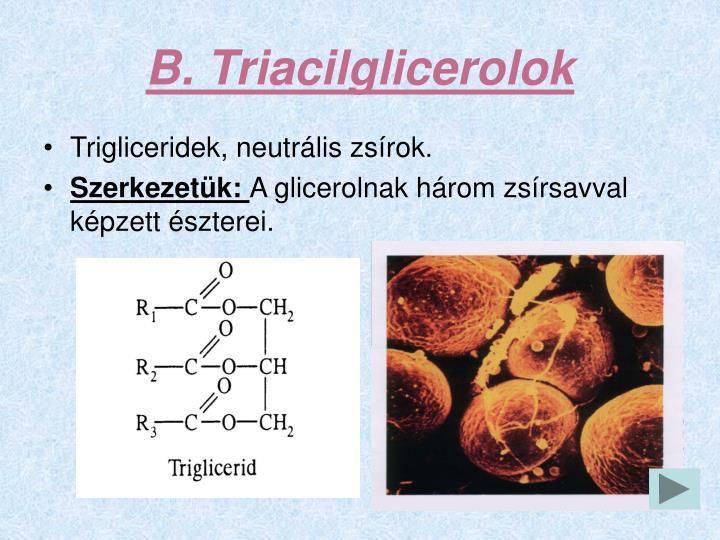 B. Triacilglicerolok