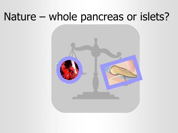 Nature – whole pancreas or islets?