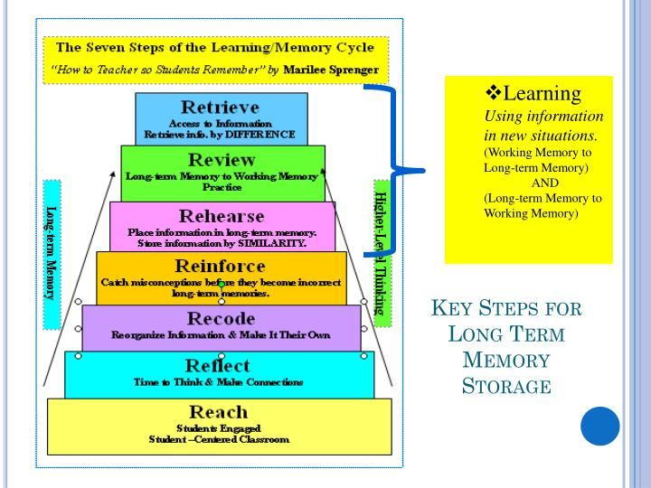 Key Steps for Long Term Memory Storage