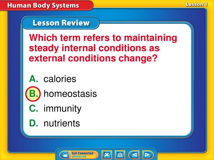 Which term refers to maintaining steady internal conditions as external conditions change?