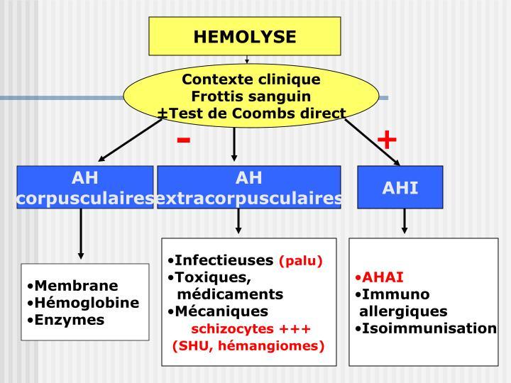 HEMOLYSE