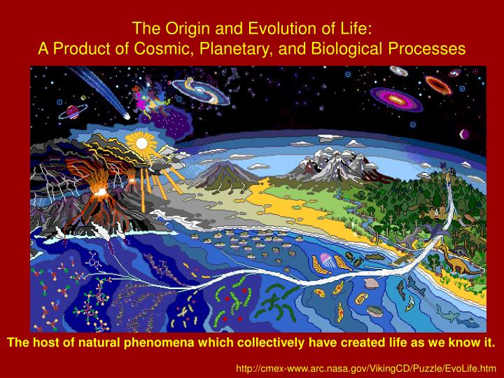 The Origin and Evolution of Life: