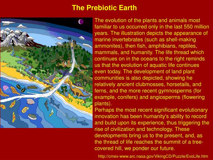 The Prebiotic Earth
