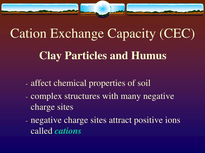 Cation exchange capacity cec