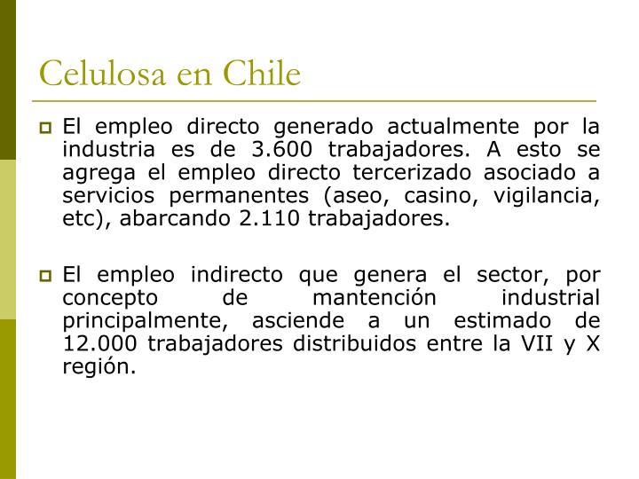 Celulosa en Chile
