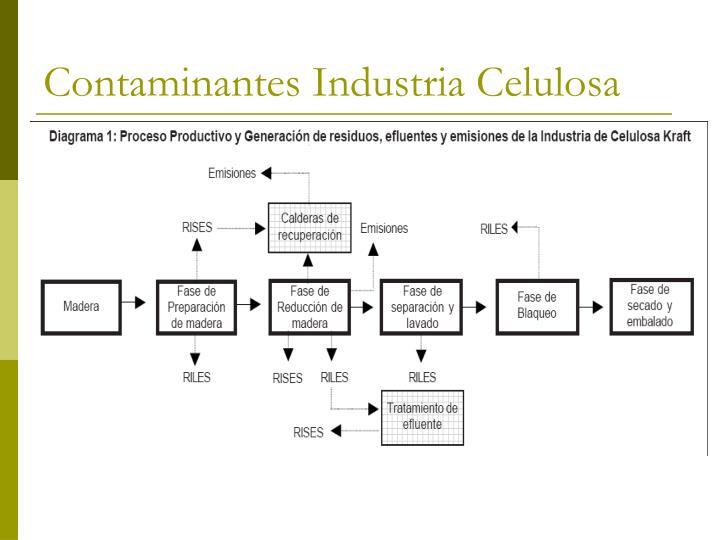 Contaminantes Industria Celulosa