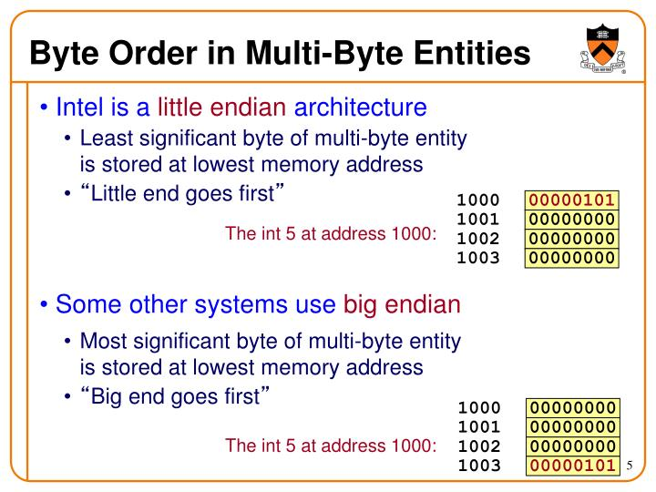 Byte Order in Multi-Byte Entities