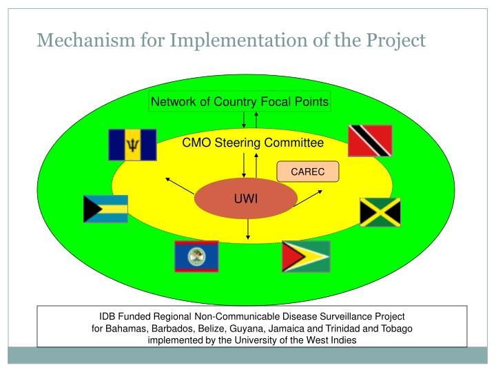 Mechanism for Implementation of the Project