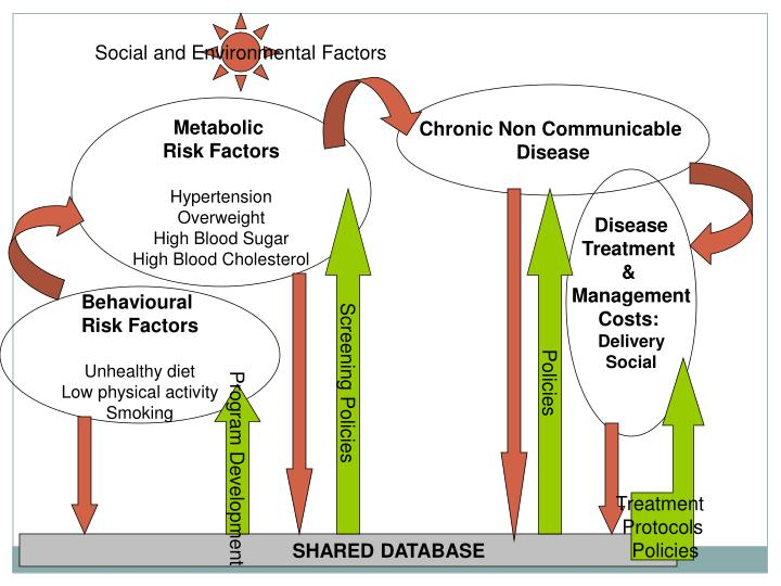 Social and Environmental Factors