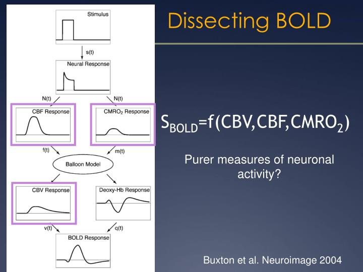 Dissecting BOLD
