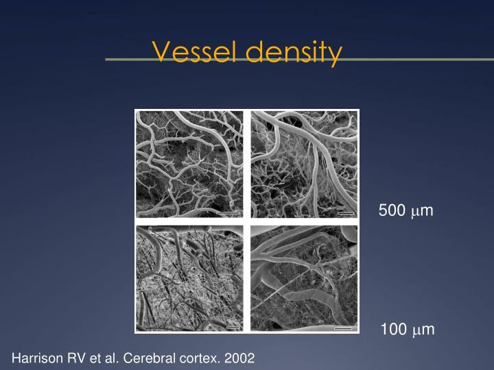 Vessel density