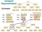 compact representation