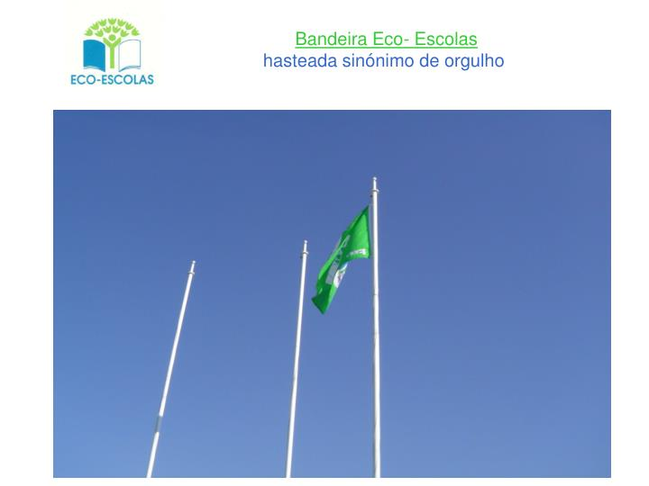 Bandeira Eco- Escolas