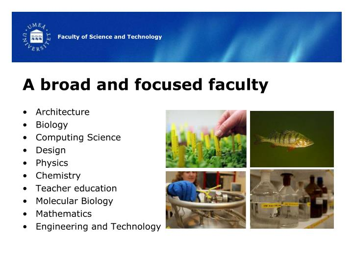 A broad and focused faculty