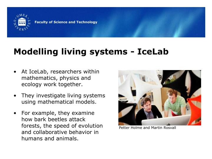 Modelling living systems - IceLab