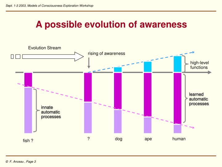 A possible evolution of awareness