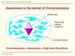 awareness is the kernel of consciousness