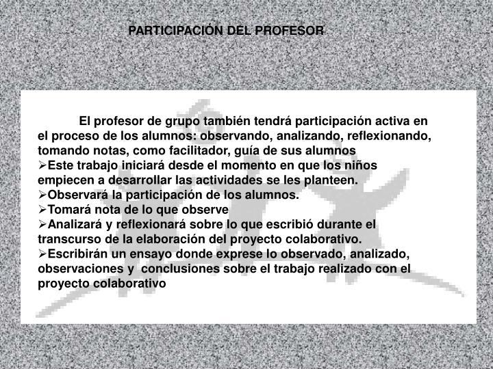 PARTICIPACIÓN DEL PROFESOR