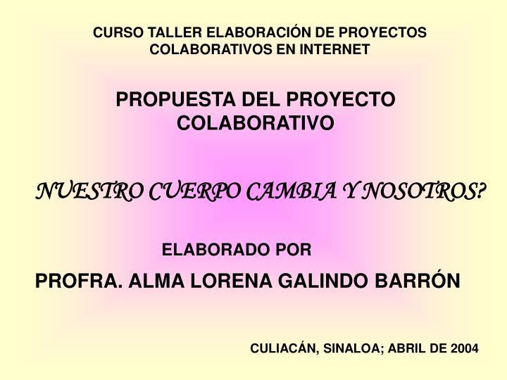 CURSO TALLER ELABORACIÓN DE PROYECTOS COLABORATIVOS EN INTERNET