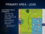 primary area lead