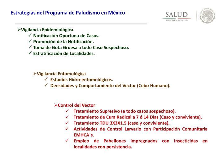 Estrategias del Programa de Paludismo en México