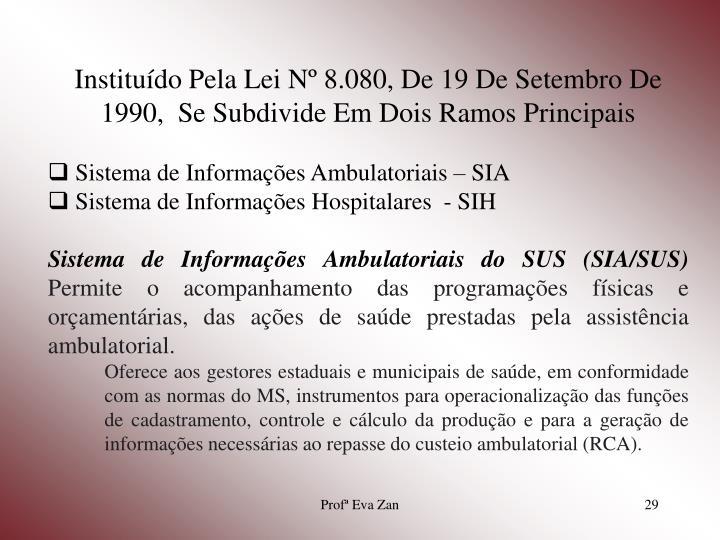 Instituído Pela Lei Nº 8.080, De 19 De Setembro De 1990,  Se Subdivide Em Dois Ramos Principais