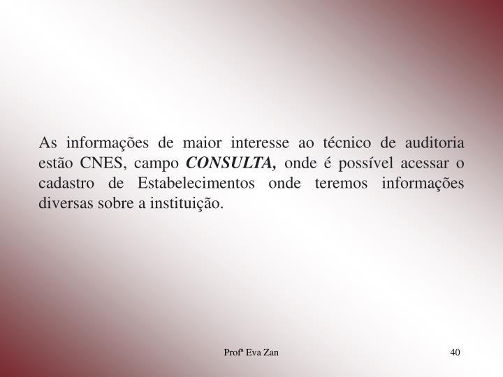 As informações de maior interesse ao técnico de auditoria estão CNES, campo