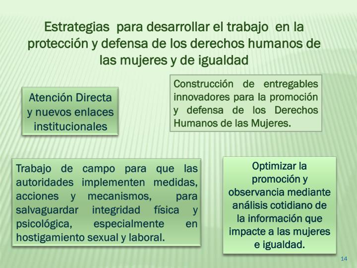 Estrategias  para desarrollar el trabajo  en la protección y defensa de los derechos humanos de las mujeres y de igualdad