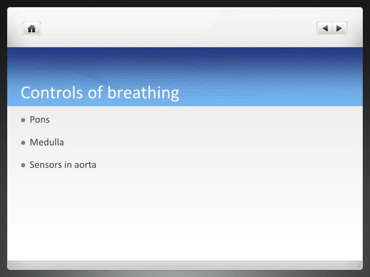 Controls of breathing