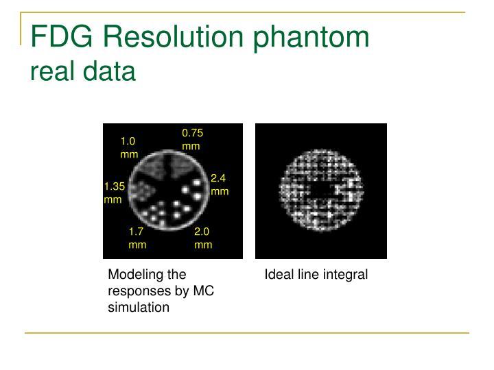 FDG Resolution phantom