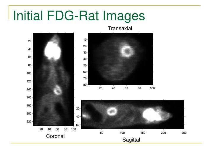 Initial FDG-Rat Images