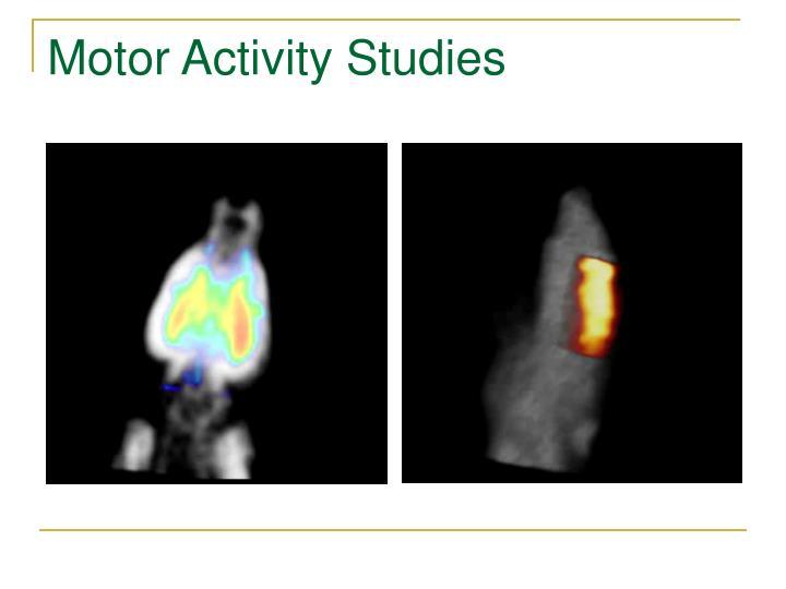 Motor Activity Studies