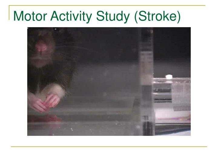 Motor Activity Study (Stroke)