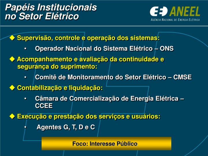 Papéis Institucionais     no Setor Elétrico