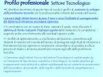 profilo professionale settore tecnologico