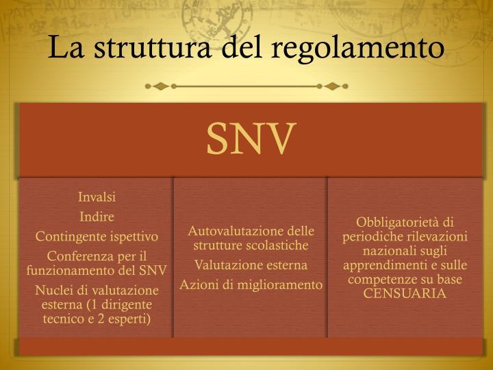 La struttura del regolamento