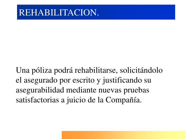 REHABILITACION.
